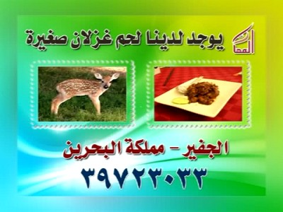Almaha TV